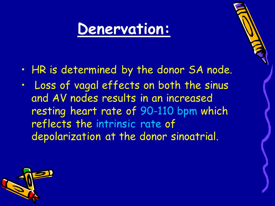 Denervation: HR is determined by the donor SA node.