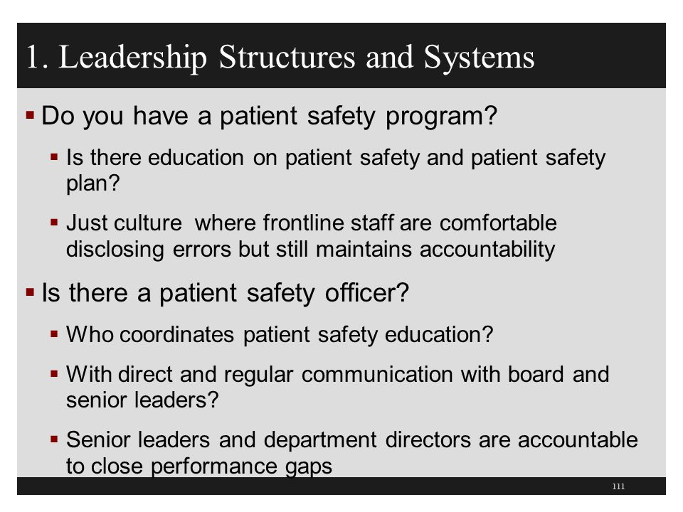 1. Leadership Structures and Systems