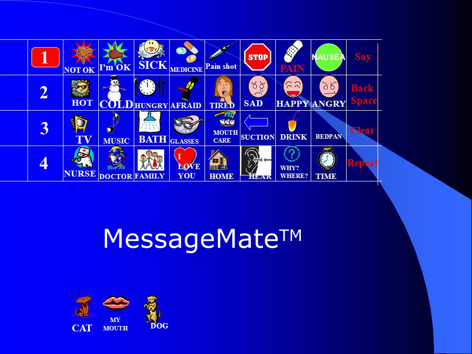 MessageMateTM 1 2 3 4 SICK COLD TV Say PAIN Back Space Clear BATH