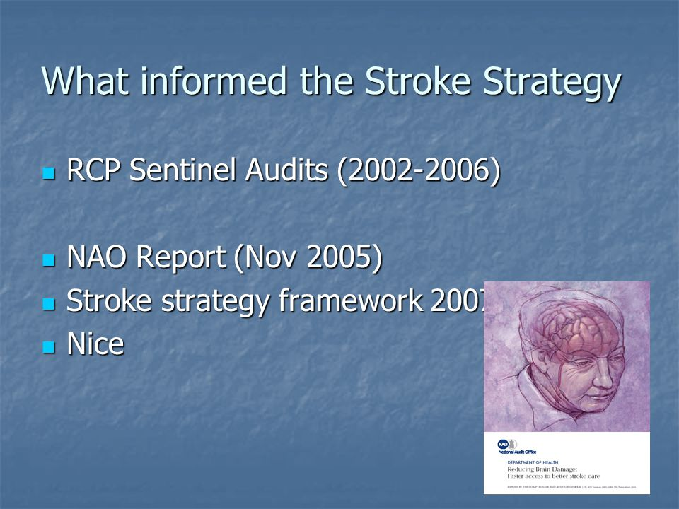 What informed the Stroke Strategy