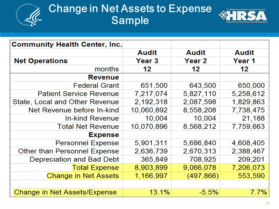 Change in Net Assets to Expense Sample