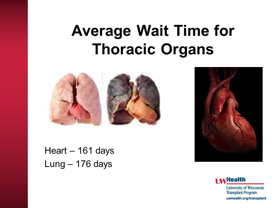 Average Wait Time for Thoracic Organs