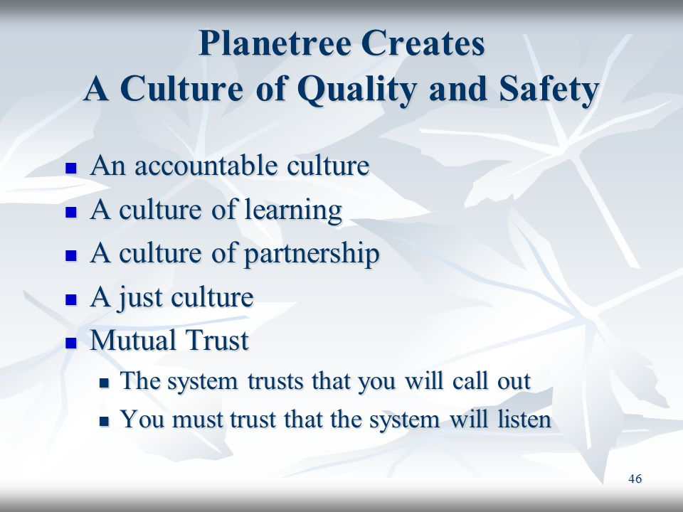 Planetree Creates A Culture of Quality and Safety