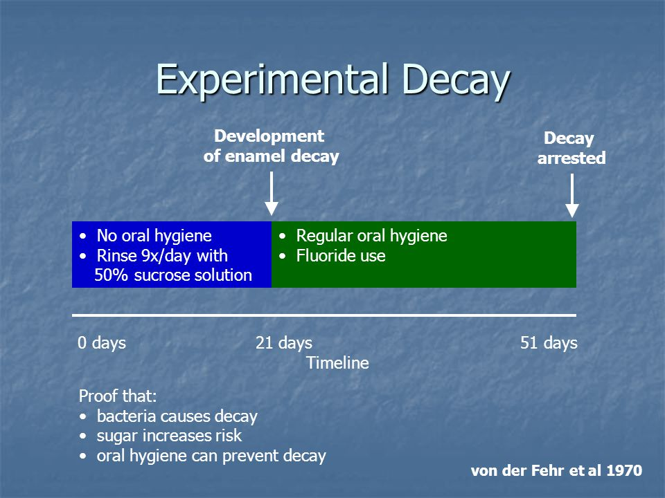 Experimental Decay Development of enamel decay Decay arrested