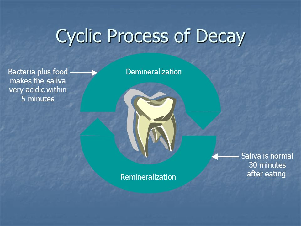 Cyclic Process of Decay