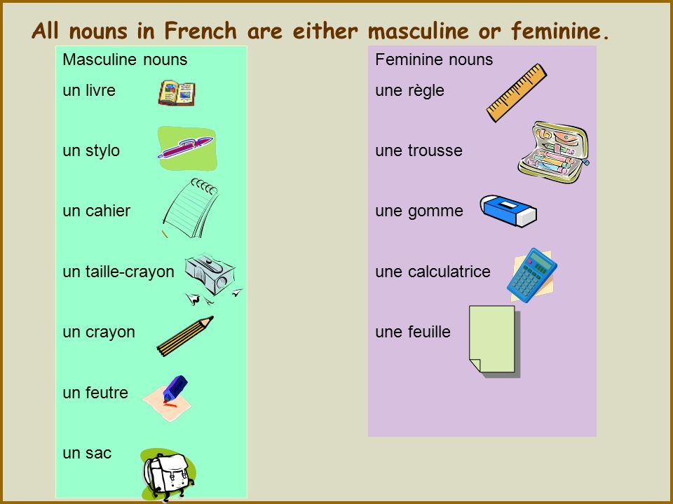 All nouns in French are either masculine or feminine.