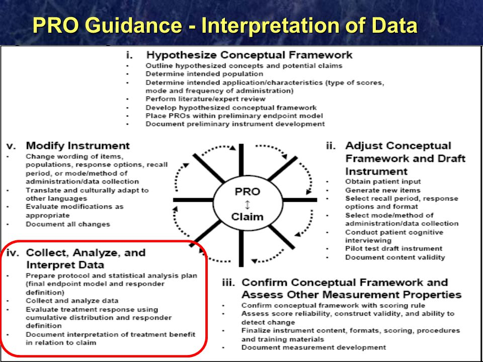 PRO Guidance - Interpretation of Data