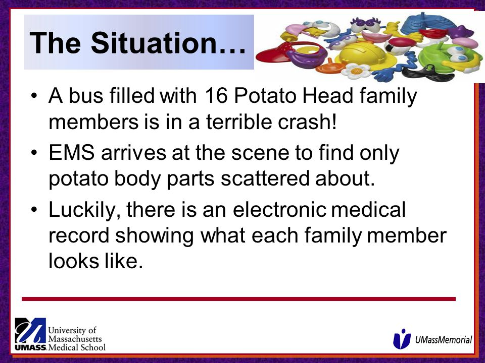 The Situation… A bus filled with 16 Potato Head family members is in a terrible crash!