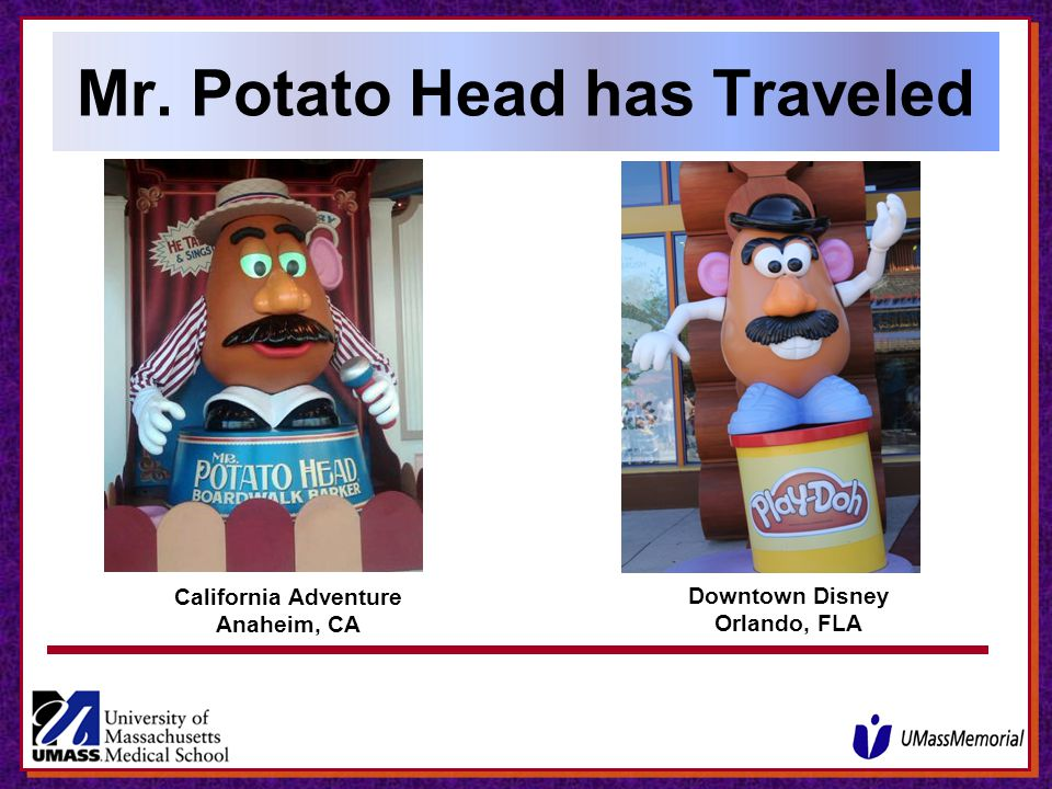 Mr. Potato Head has Traveled