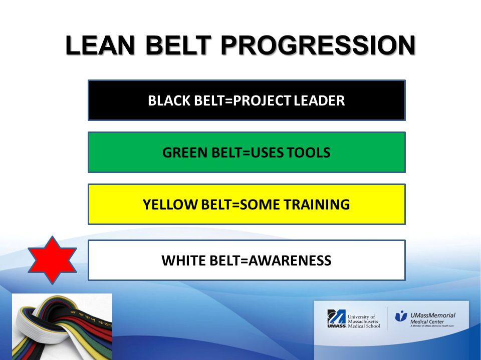 BLACK BELT=PROJECT LEADER YELLOW BELT=SOME TRAINING