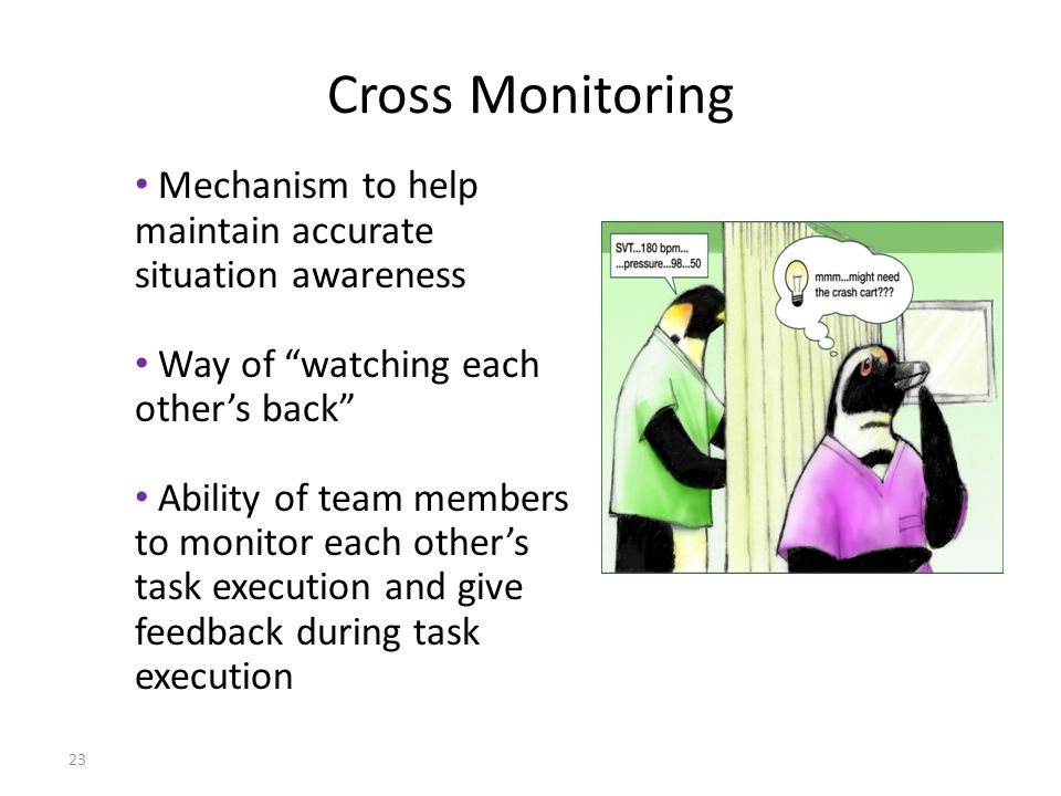 Cross Monitoring Mechanism to help maintain accurate situation awareness. Way of watching each other's back