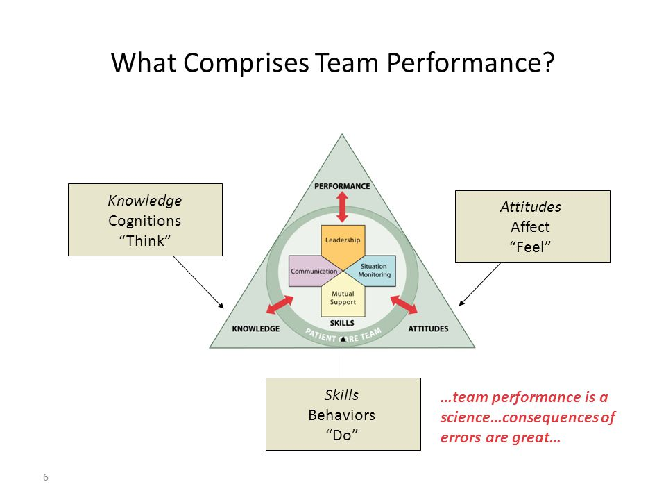 What Comprises Team Performance