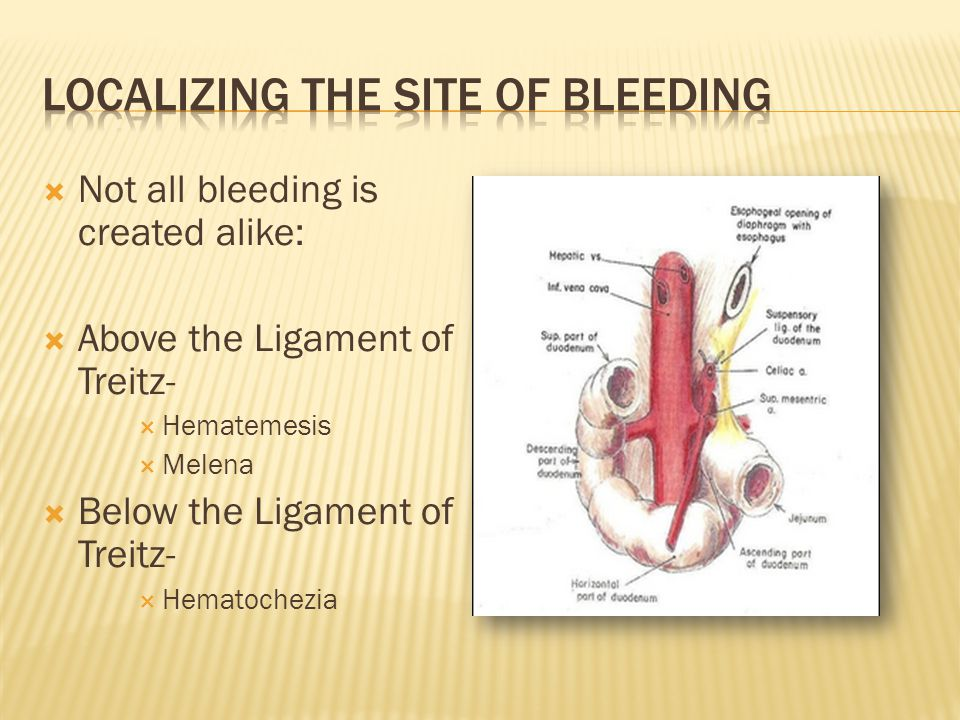 Localizing the site of bleeding