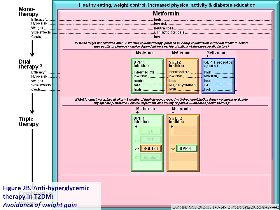 Figure 2B. Anti-hyperglycemic therapy in T2DM: