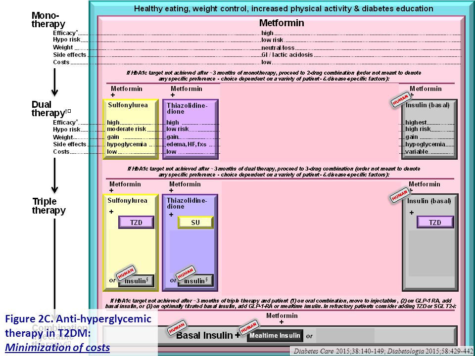 Figure 2C. Anti-hyperglycemic therapy in T2DM: Minimization of costs