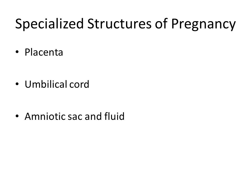 Specialized Structures of Pregnancy