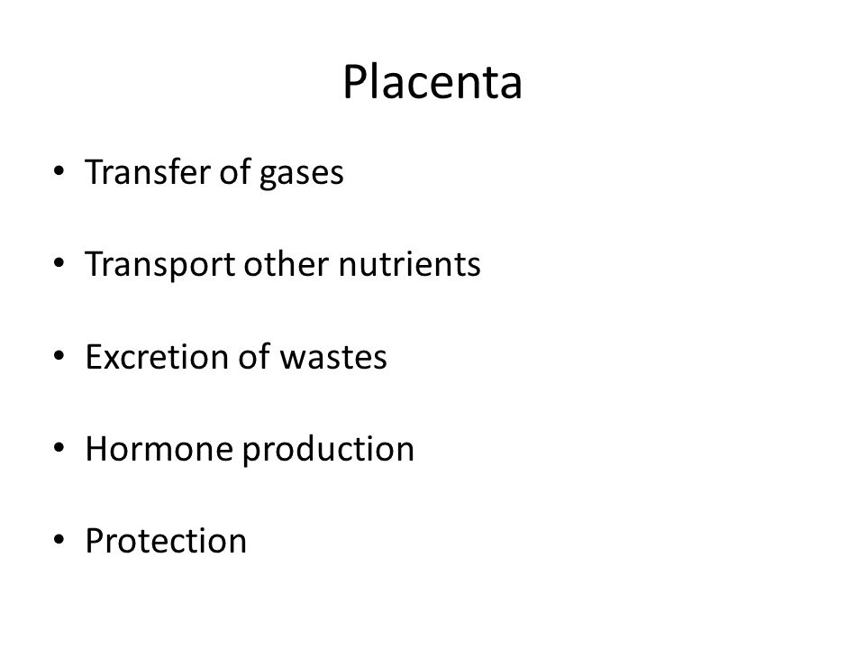 Placenta Transfer of gases Transport other nutrients