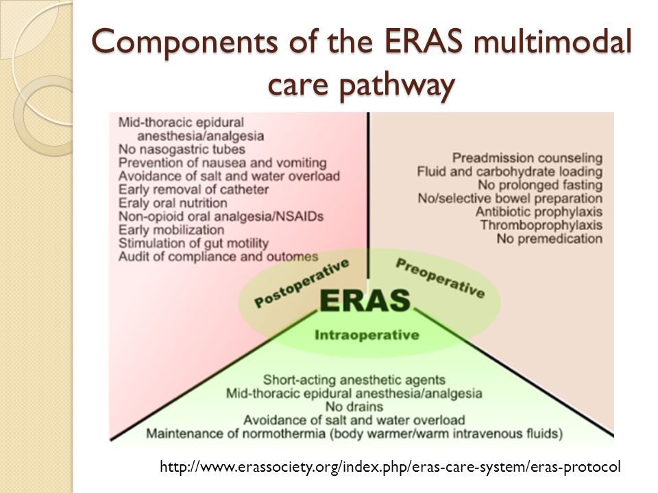 Components of the ERAS multimodal care pathway
