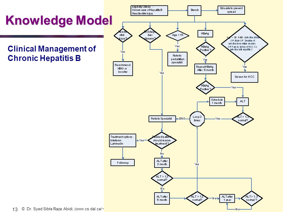 Knowledge Model Clinical Management of Chronic Hepatitis B 13