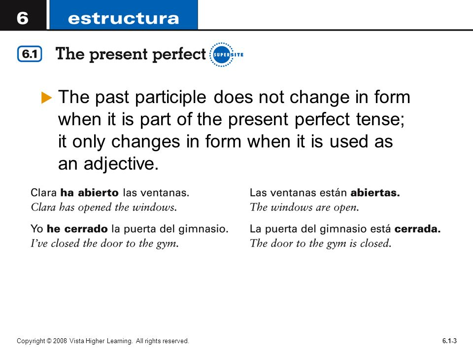 The past participle does not change in form when it is part of the present perfect tense; it only changes in form when it is used as an adjective.