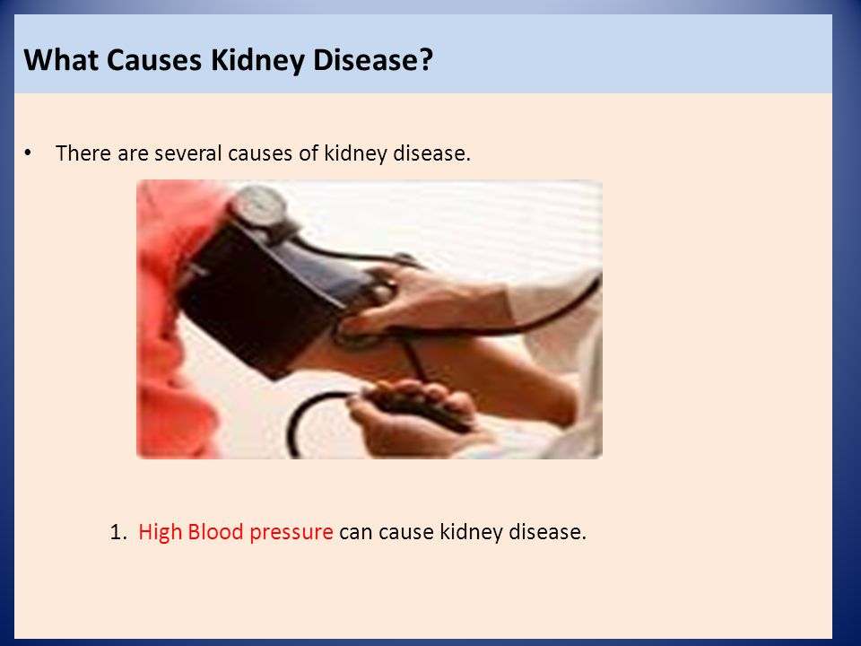 What Causes Kidney Disease