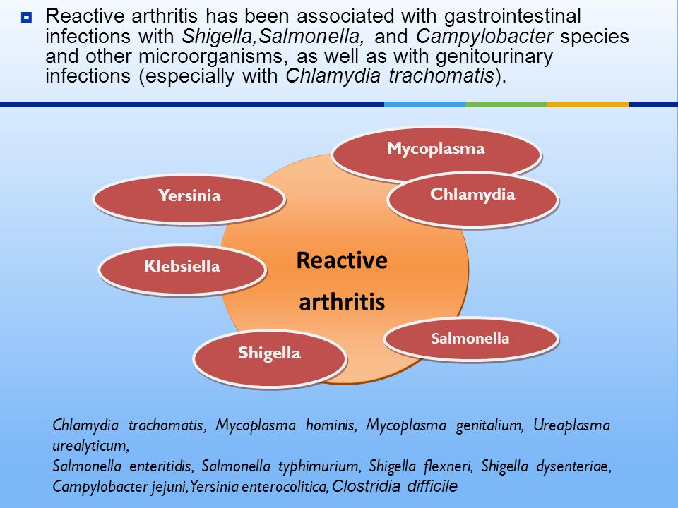 Reactive arthritis has been associated with gastrointestinal infections with Shigella,Salmonella, and Campylobacter species and other microorganisms, as well as with genitourinary infections (especially with Chlamydia trachomatis).
