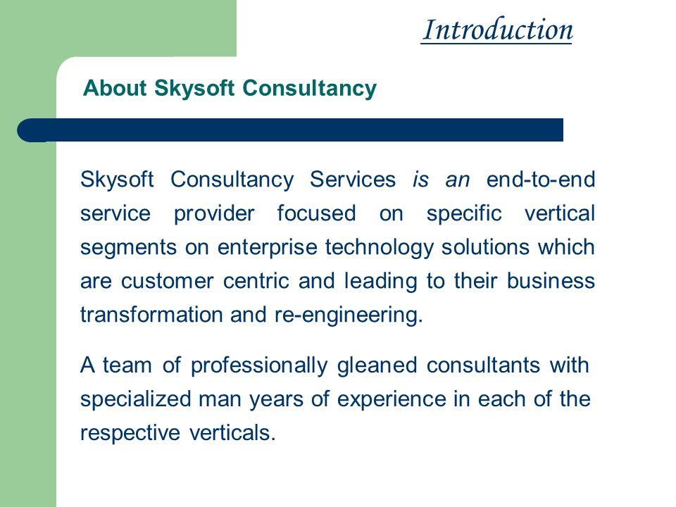 About Skysoft Consultancy