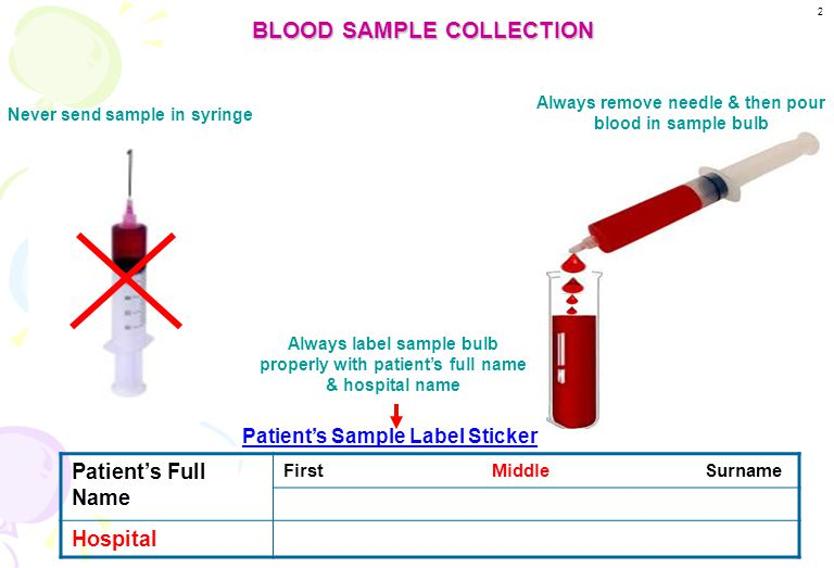 BLOOD SAMPLE COLLECTION