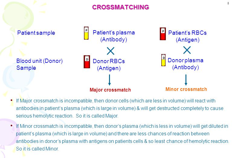 CROSSMATCHING Patient sample Patient's plasma (Antibody)