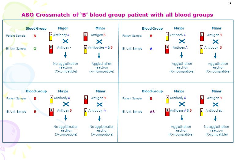 ABO Crossmatch of 'B' blood group patient with all blood groups
