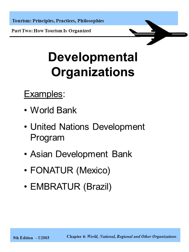 Developmental Organizations
