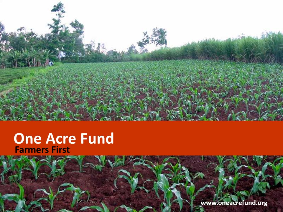 One Acre Fund Farmers First www.oneacrefund.org CONFIDENTIAL