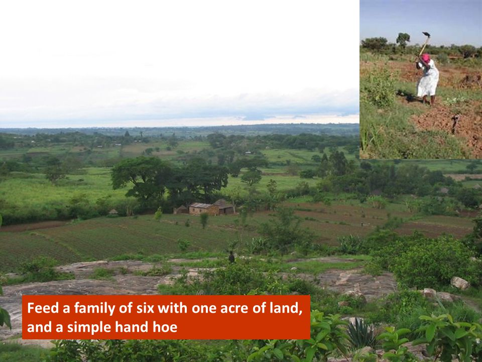 Feed a family of six with one acre of land, and a simple hand hoe