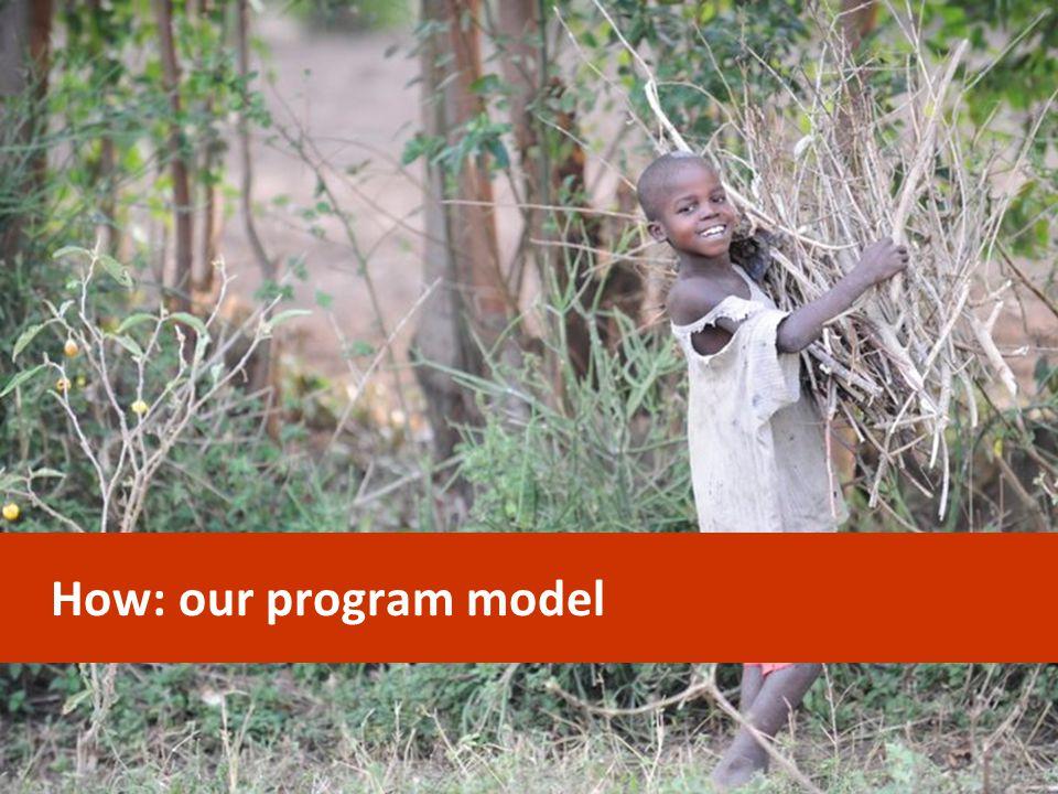 How: our program model CONFIDENTIAL