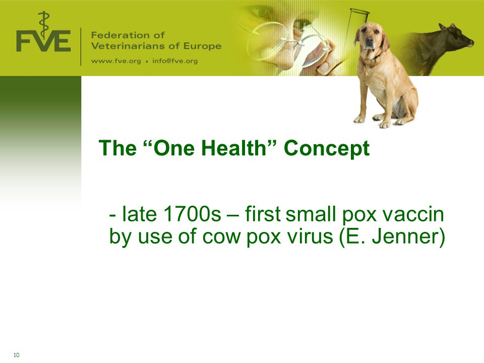 The One Health Concept