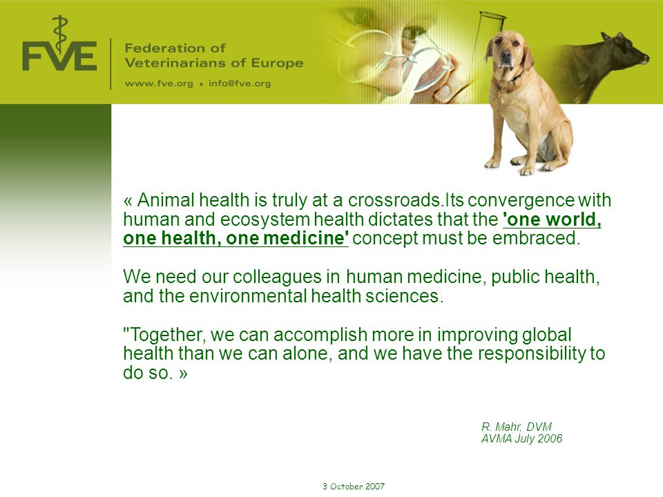 « Animal health is truly at a crossroads