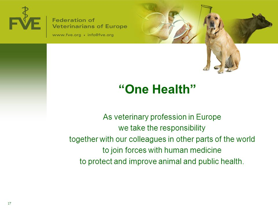 One Health As veterinary profession in Europe