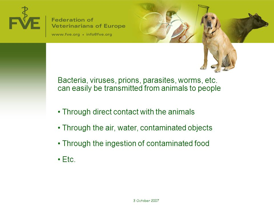 Bacteria, viruses, prions, parasites, worms, etc.