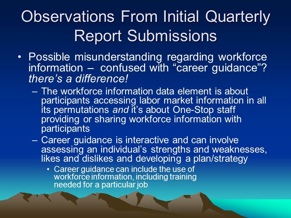 Observations From Initial Quarterly Report Submissions