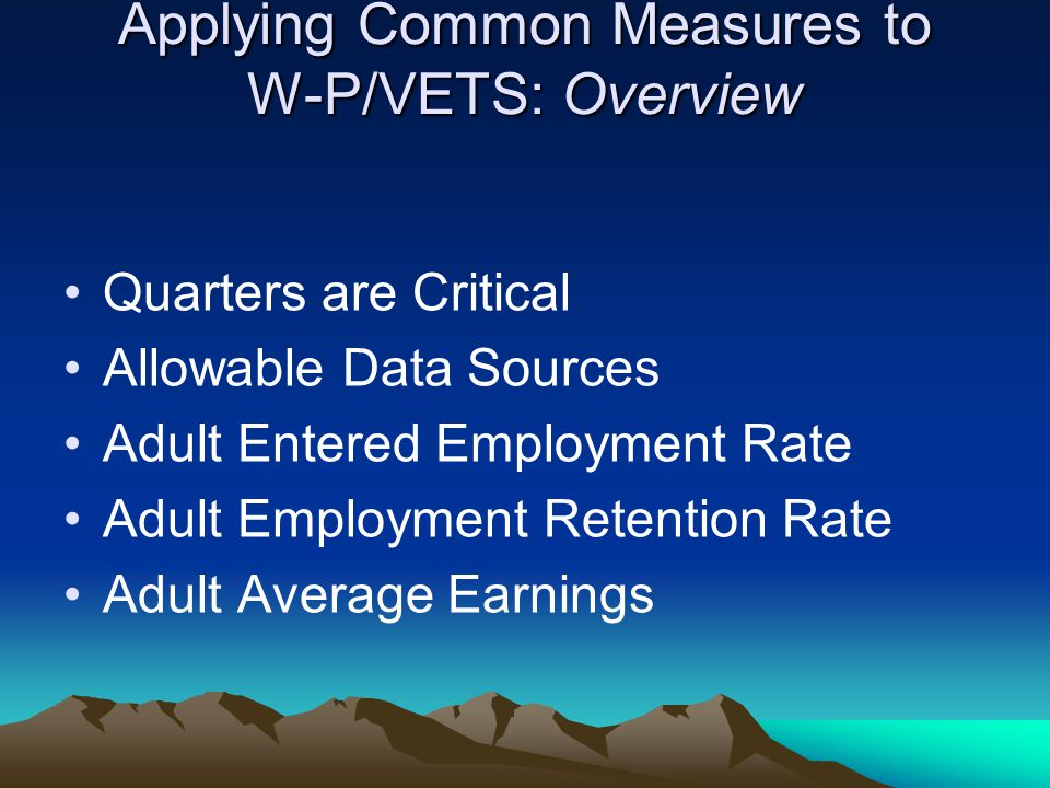 Applying Common Measures to W-P/VETS: Overview