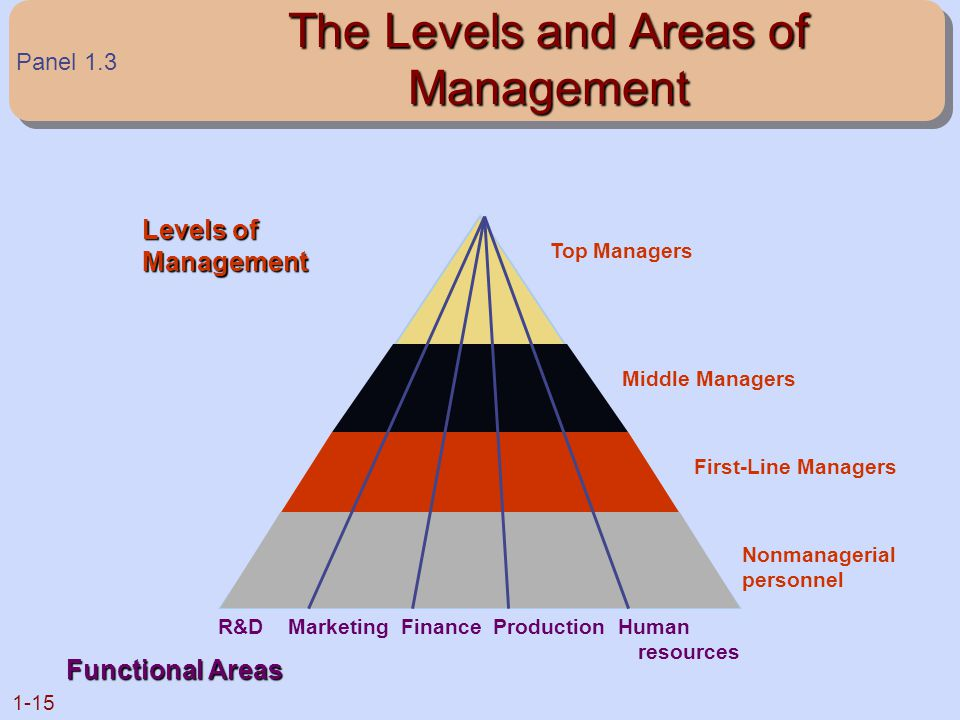 The Levels and Areas of Management