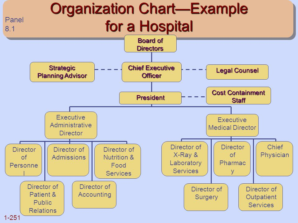 Organization Chart—Example for a Hospital