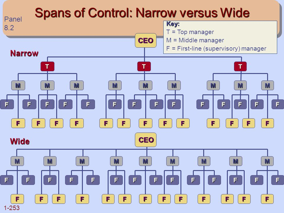 Spans of Control: Narrow versus Wide