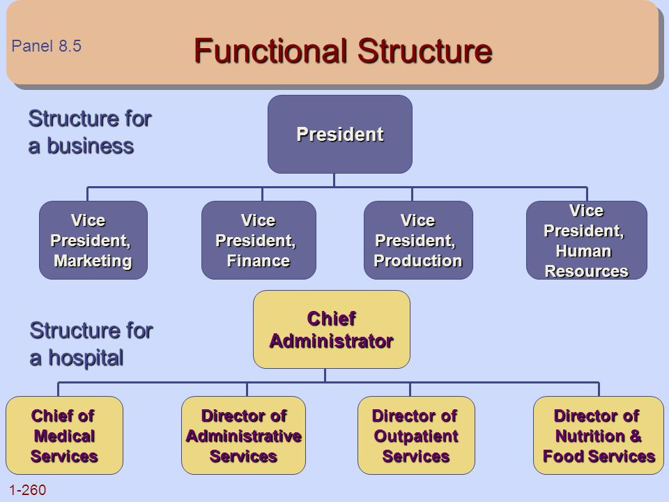 Functional Structure Structure for a business Structure for a hospital