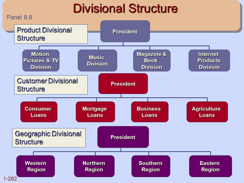 Divisional Structure Product Divisional Structure