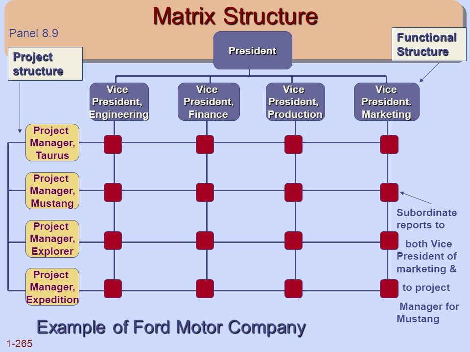 Matrix Structure Example of Ford Motor Company Panel 8.9