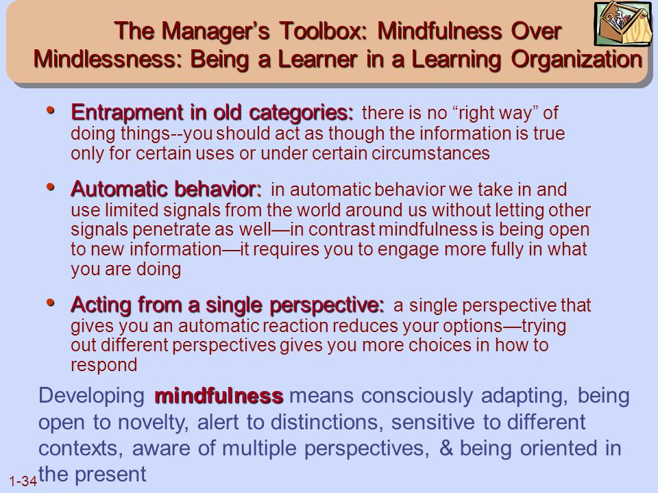 The Manager's Toolbox: Mindfulness Over Mindlessness: Being a Learner in a Learning Organization