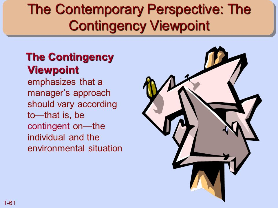 The Contemporary Perspective: The Contingency Viewpoint
