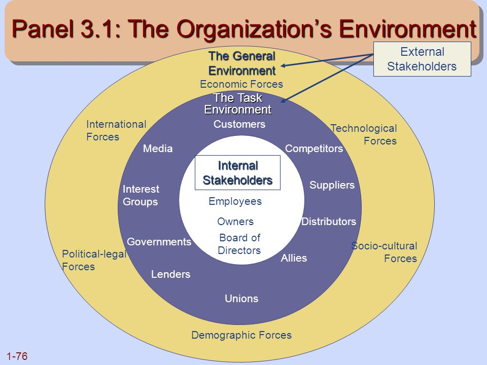 Panel 3.1: The Organization's Environment