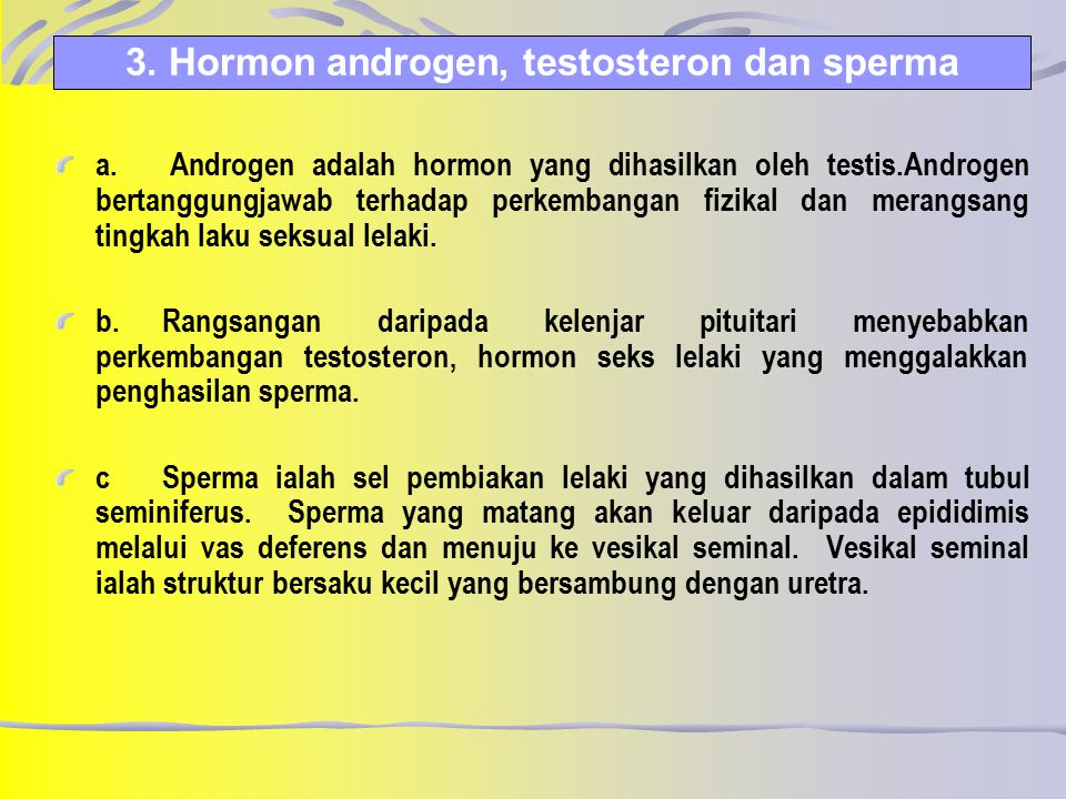 3. Hormon androgen, testosteron dan sperma
